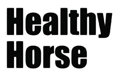 Silversponsor HCHS High Chaparral Horse Show